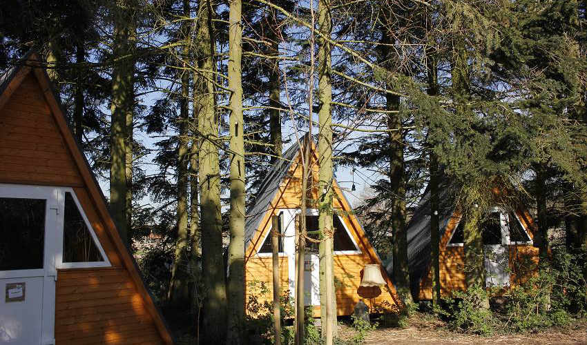 Haus-Anna-Elbe-Waldhuetten-Hamburg-Retreat-Glamping-Location